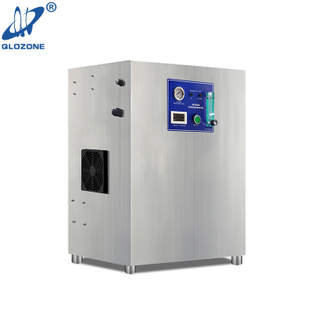PSA Oxygen Generator Machine for Ozone Production 8 L