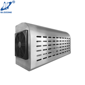 Wall-mounted Odor Free Commercial Ozone Generator in Apartment