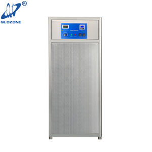 Air Source Water Cooling Ozone Generator for Waste Water Treatment 80 G