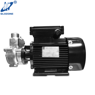 High Efficiency Gas Liquid Mixing Pump for Sale