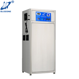 Pool Use Disinfection Commercial Ozone Generator for Water Purification